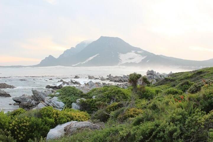 Tranquility & Beauty in Bettysbay - Betty's Bay