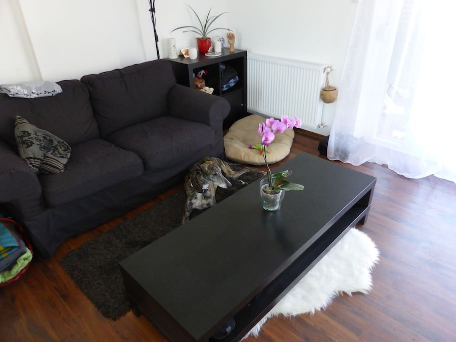 Living room / Nagyszoba