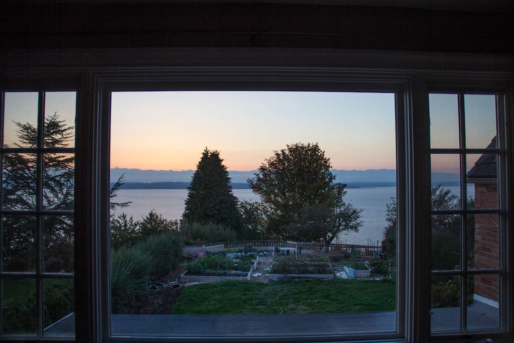 Our urban farm, Puget Sound in background.