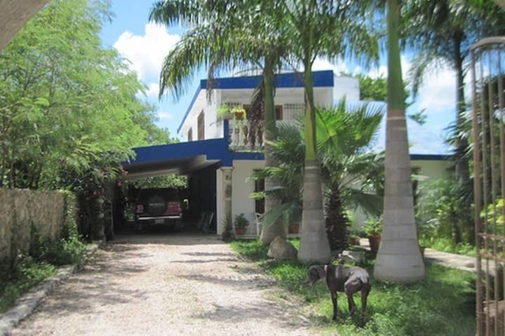 Single Rooms in the Mayan Jungle - Mérida - Maison