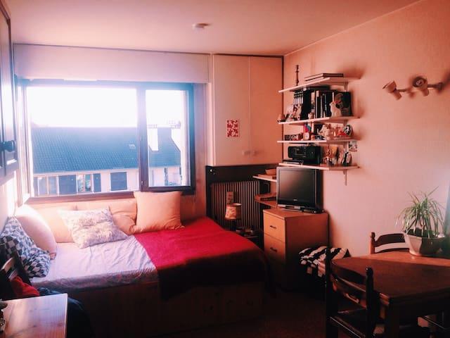 Studio près de la vieille ville - Annecy - Apartment