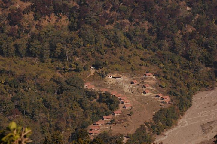 Forrest - Rajaji National Park - Rishikesh - Tent