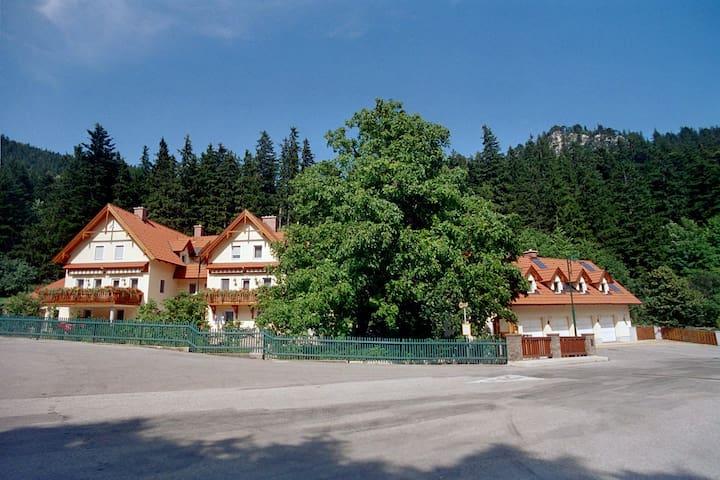 Apartment **Haus Lenz** 70m²  - Puchberg am Schneeberg - 아파트