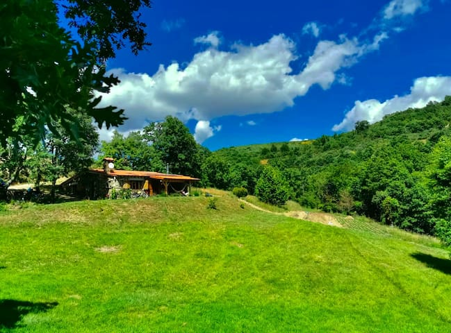 Beautiful Hideaway in the Hills of Tras-os- Montes