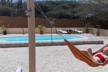 Kingdom Love & Shine Aruba, private pool $90.