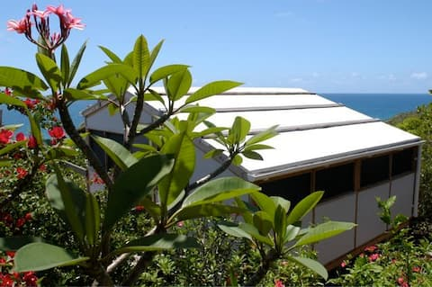 Treehouse Eco-Cottages - A Short Walk to the Beach