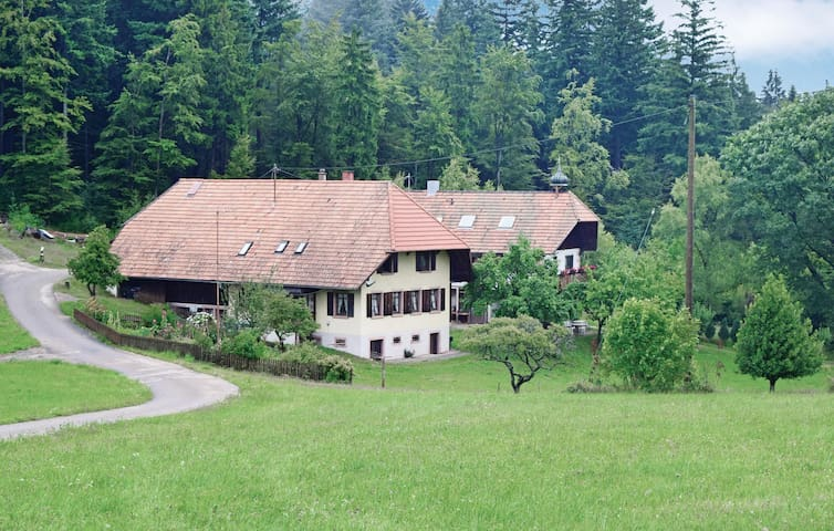 Holiday cottage with 4 bedrooms on 160 m² in Schweighausen