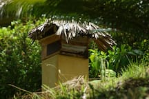 One of our bee hives for JP honey and to enhance our flowers and plant growth