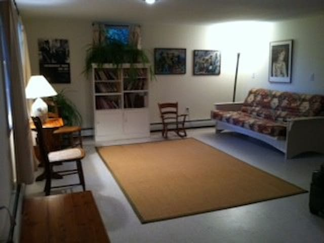Private lodging overlooking pond - Amherst - Apartment