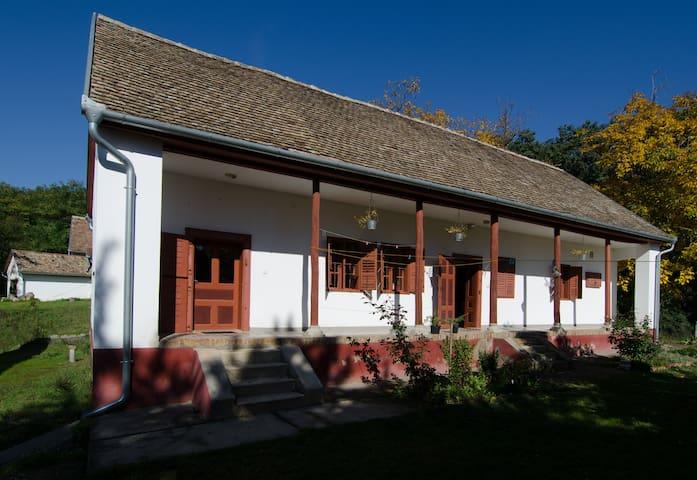 Mecsek Farmhouse /// Mecseki Tanya - Apátvarasd - Dům pro hosty