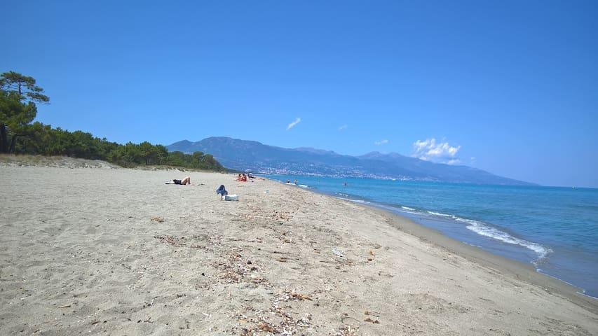 rez de plage près de Bastia