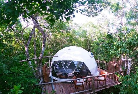 Jungle Eco Tree House near cenotes - king size bed