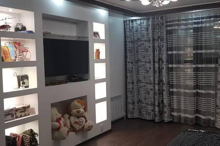 Комфортная и чистая квартира в центре Караганды