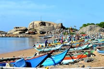 Nearby Attractions - Kalametiya Fisheries Harbour (5 minutes walking distance)