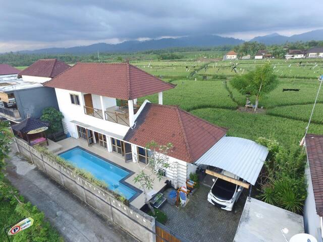 Medewi S Villa : Completely private - Negara - วิลล่า