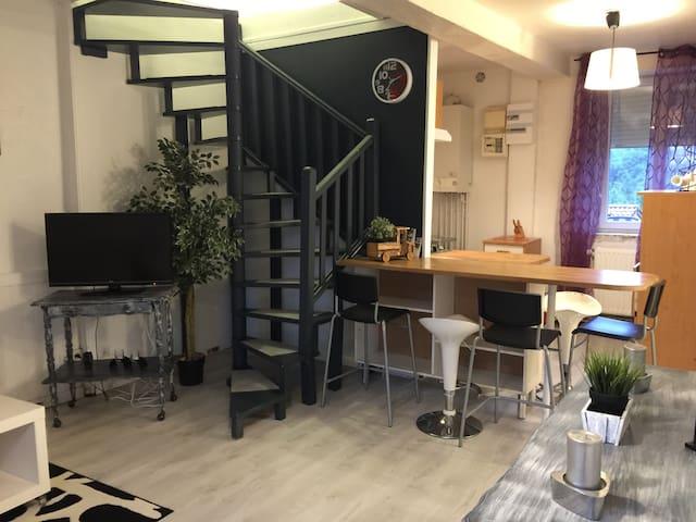 Appartement 80 m2 - Saint-Jean-Bonnefonds - Apartemen