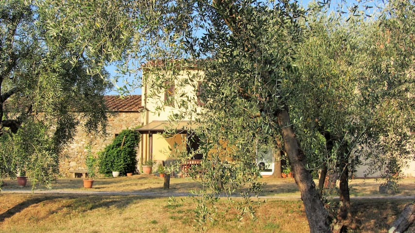 Authentic tuscan paradise - Capannori - House