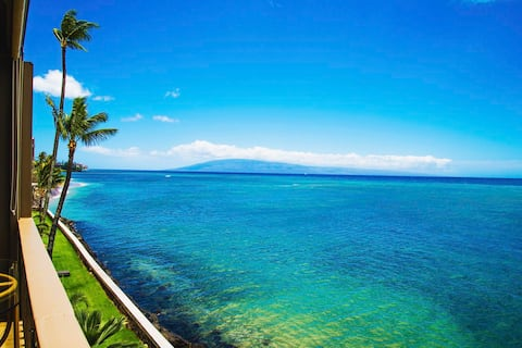 MAUI DIRECT OCEAN FRONT FOR REAL! Super Private!