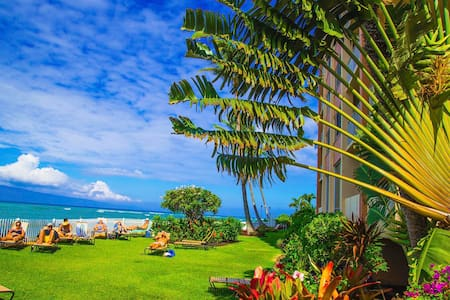 WEST MAUI DIRECT OCEAN FRONT STUDIO - Lahaina - Appartement