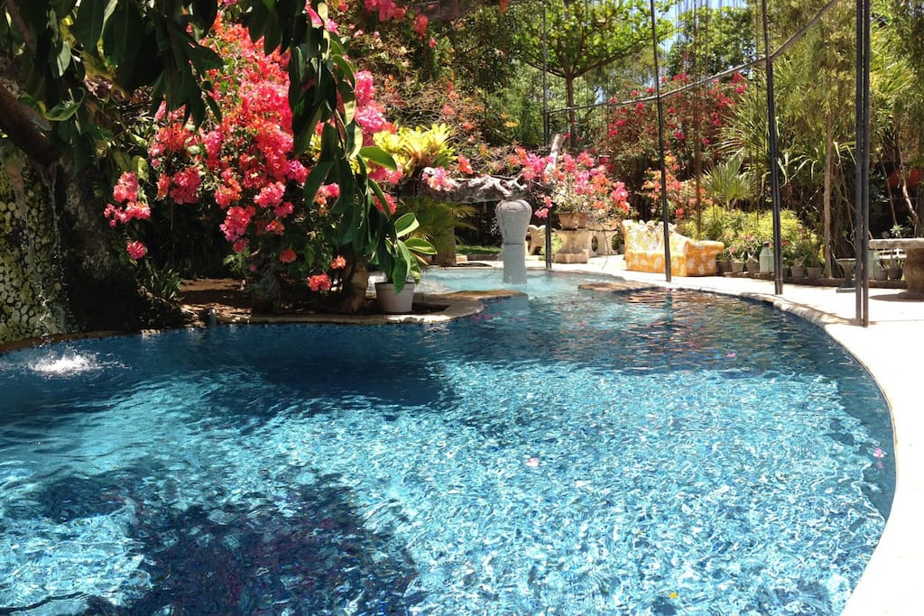 Tropical pool: a deep section for swimming; a shallow one for reclining and little kid play. All surrounded by a kid safe fence.