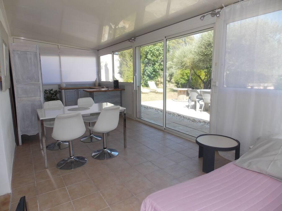 Salon /séjour avec cuisine U.S / Canapé convertible (140 x 200)