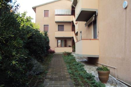 Da Sandrino-appartamento in Maremma - Magliano In Toscana
