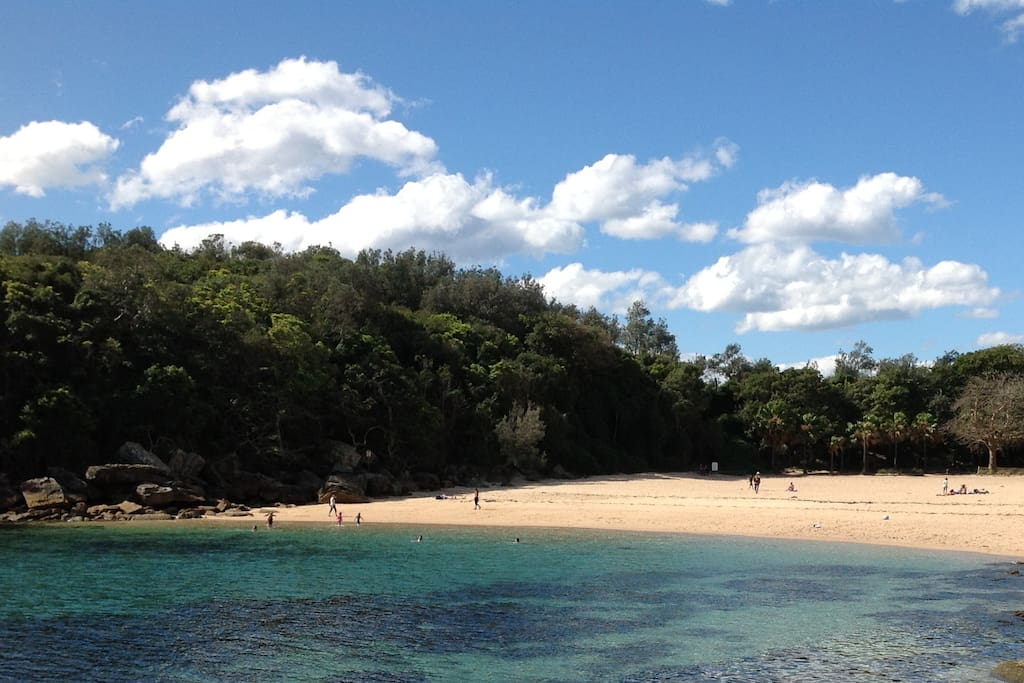 Walk to Shelley Beach