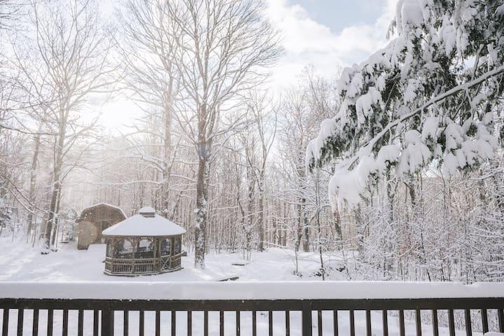 The Hunter Greenhouse - Ski House Close To Hunter