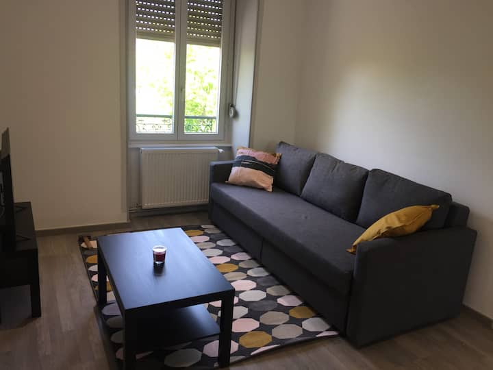 Appartement F2 refait proche Mulhouse Clemessy