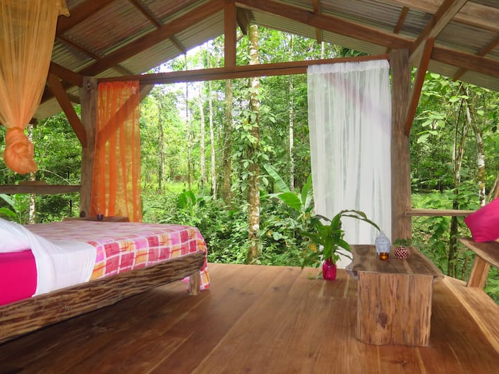 Amazing Tree-deck sleep experience!