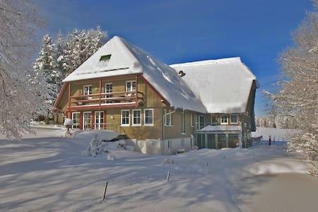 Schwarzwaldhof Apartment in ruhiger Alleinlage - Aichhalden