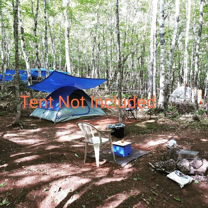 "Nature Life campground ""CAMPING"", P.E.I   (s)"