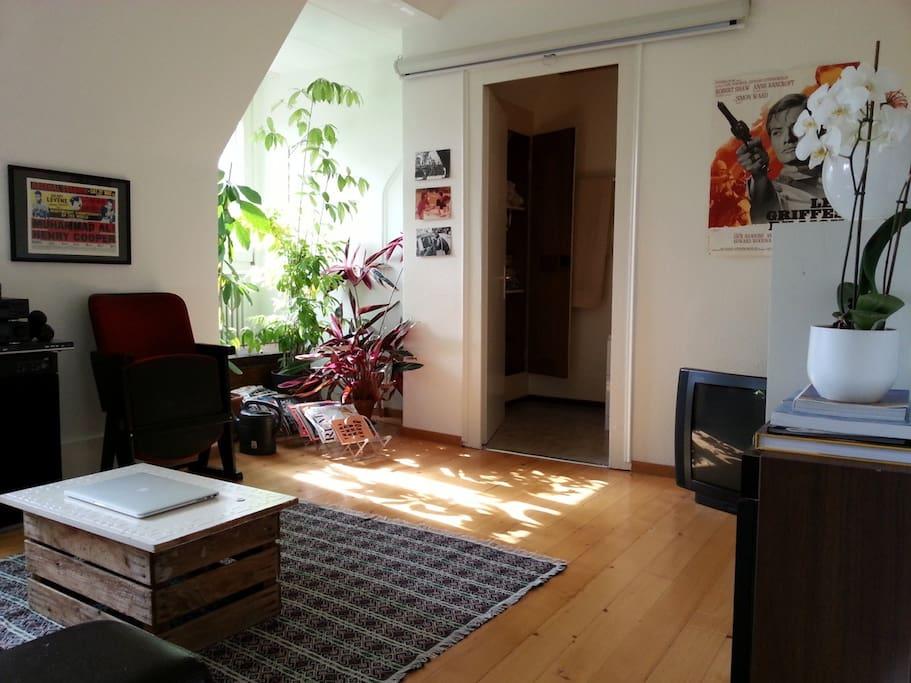 Ruhige wohnung mit vielen pflanzen wohnungen zur miete for Wohnung pflanzen