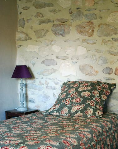 Charming house in heart of Provence - Tarascon - House