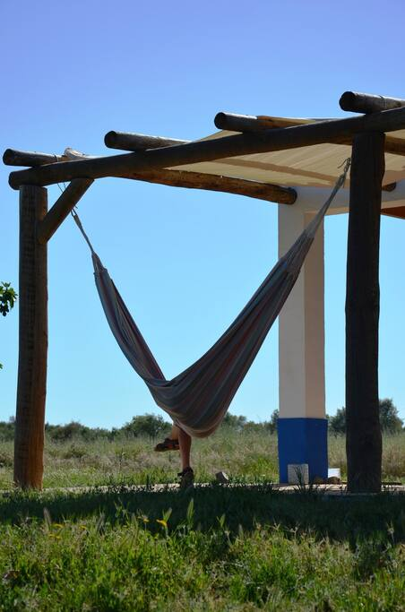 Relax and enjoy a book on the hammock