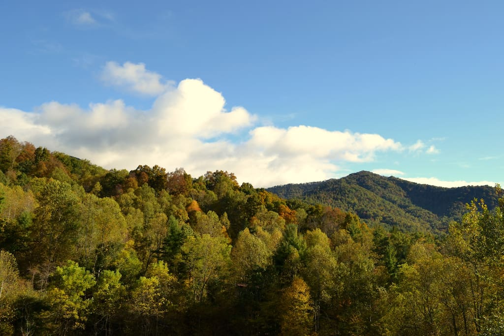Lovely Green Mountain in the Appalachian Mountains!