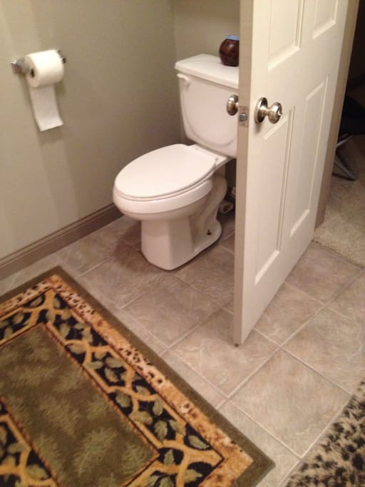 Nice large bathroom, full shower/tub.
