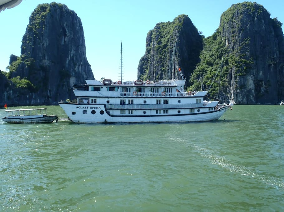 Cruising the traditional oriental junk through the bay