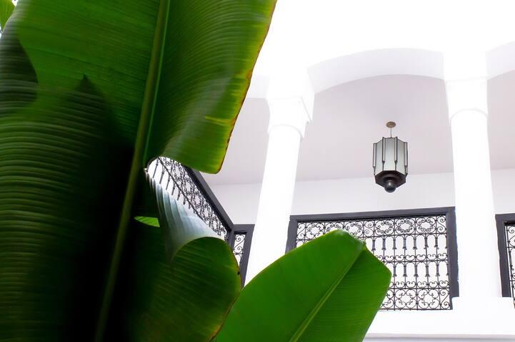 Riad Alba / Chambre Charq - Maison d'hôtes - - Marrakesh