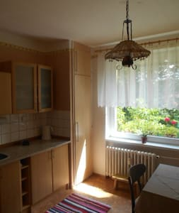Byt 1+1 v Rožnově pod Radhoštěm - Rožnov pod Radhoštěm - Apartment