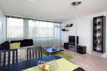 2 rooms beautiful appartment  - Reykjavik