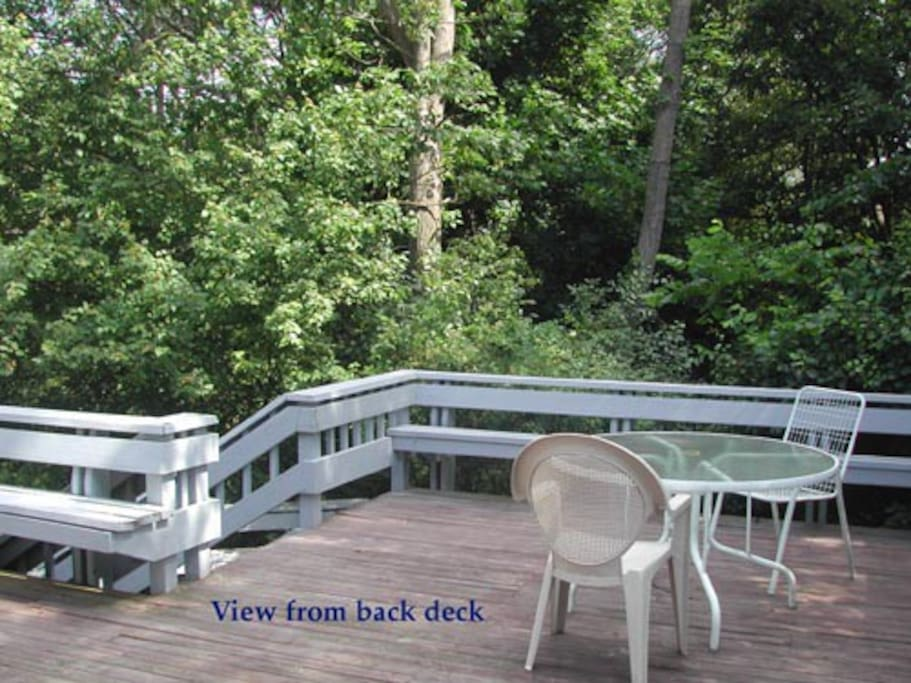 Three-level back deck overlooks conservation land
