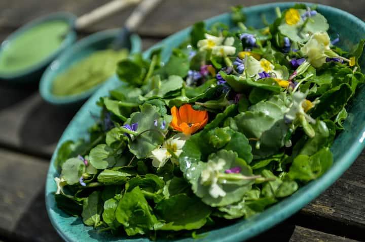 Wild salad leaves & flowers