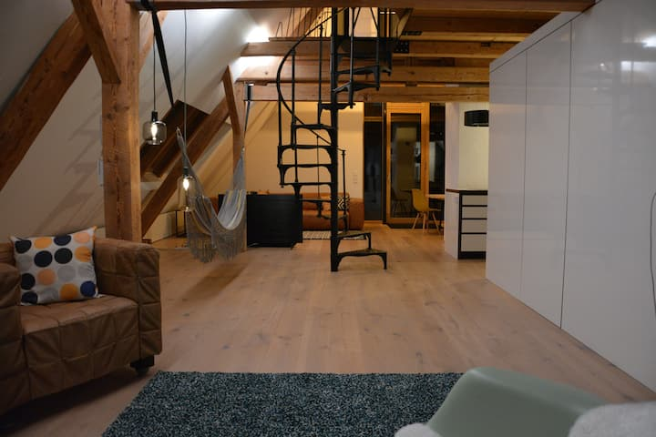 The Attic Loft - Architekten Loft im Rheintal