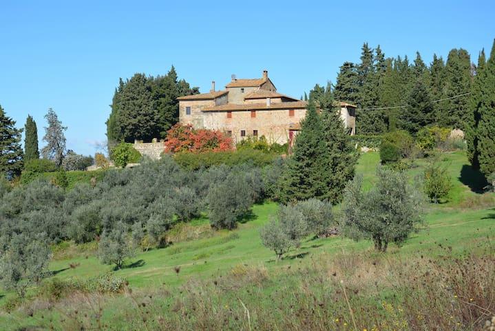 A few steps from Volterra, La Rosa Apartment - Ulignano - Apartment