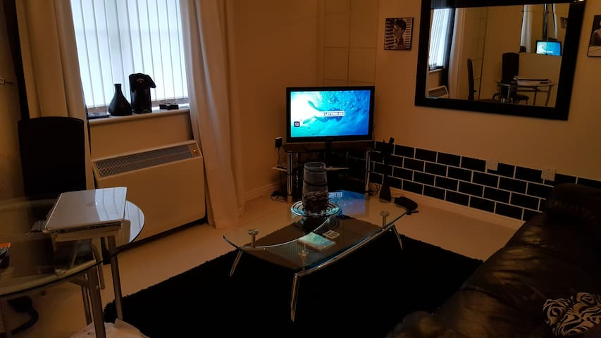 Apartment for rent UEFA CL FINAL - Pontprennau - Daire