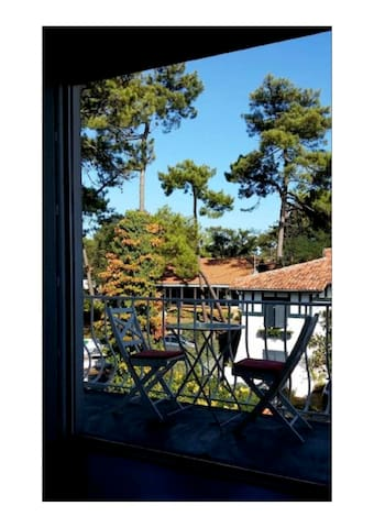 appartement centre ville d'Hossegor,  50m du lac