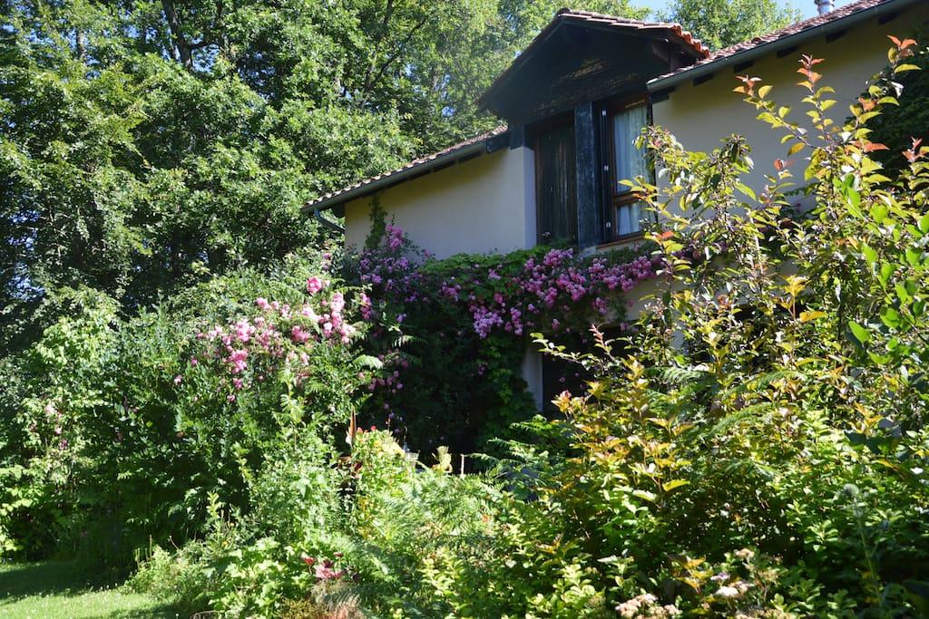 La maison et le jardin
