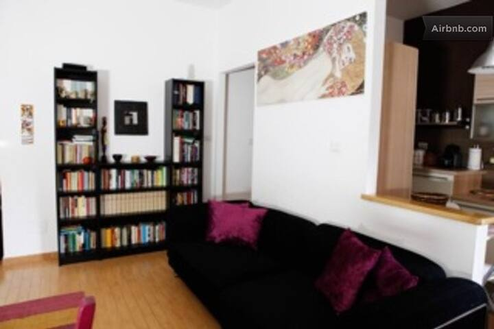 Pamphili Gio' s home in Monteverde - Rome - Appartement