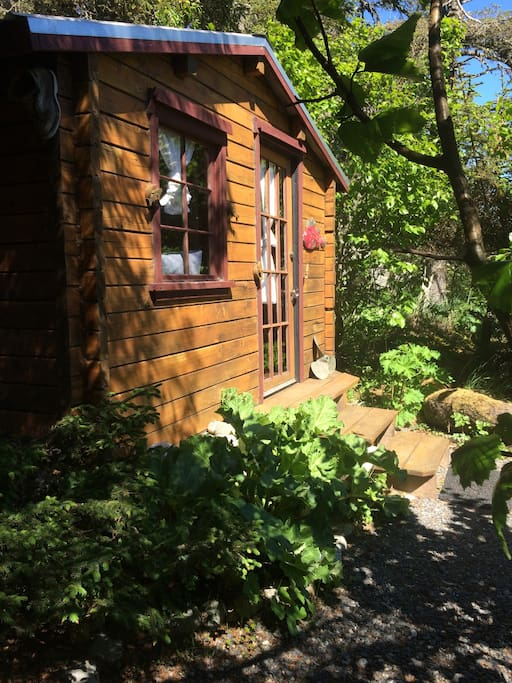 The pioneer Cabin, help your self to some rhubarb!